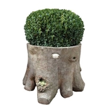 French Faux Bois Planters